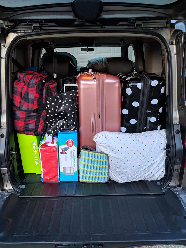 Honda Element Interior packing for a road trip vacation suitcase bags like tetris fits inside the Cargo Area 2