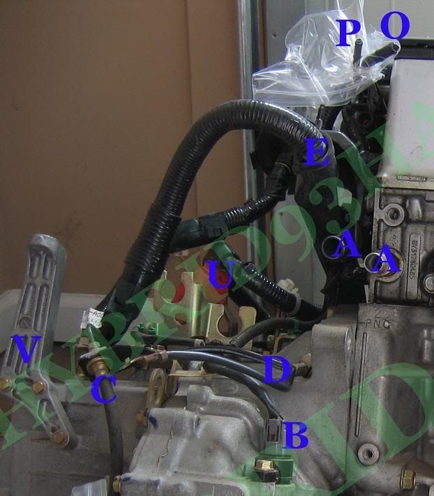 Honda Element K24 Part and Sensor Diagram 8
